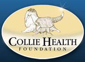 Collie Rescue Of Tampa Bay Inc Helpful Links Click